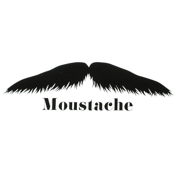 moustache-2.jpg