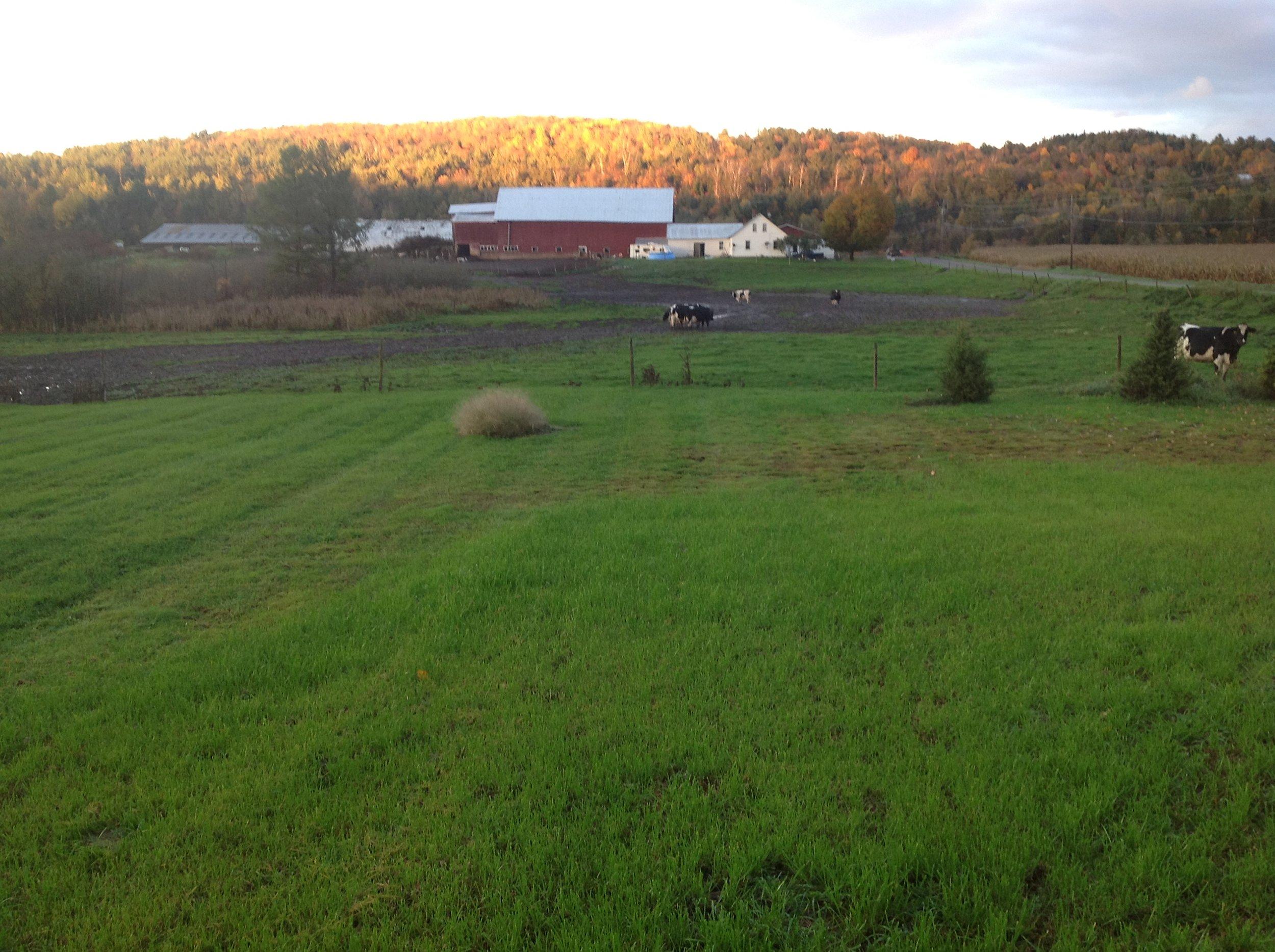 My Vermont farm.