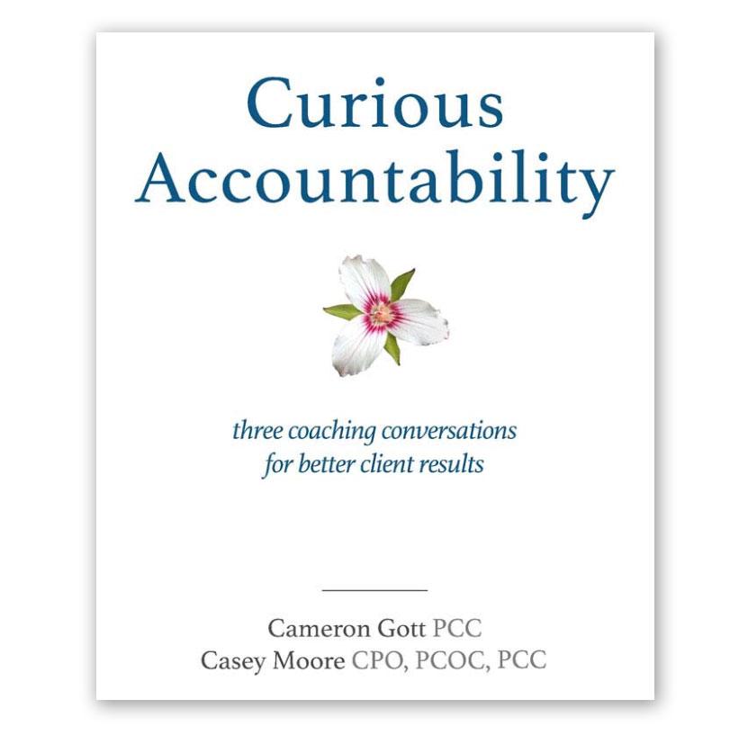 curious-accountability-ebook.jpg