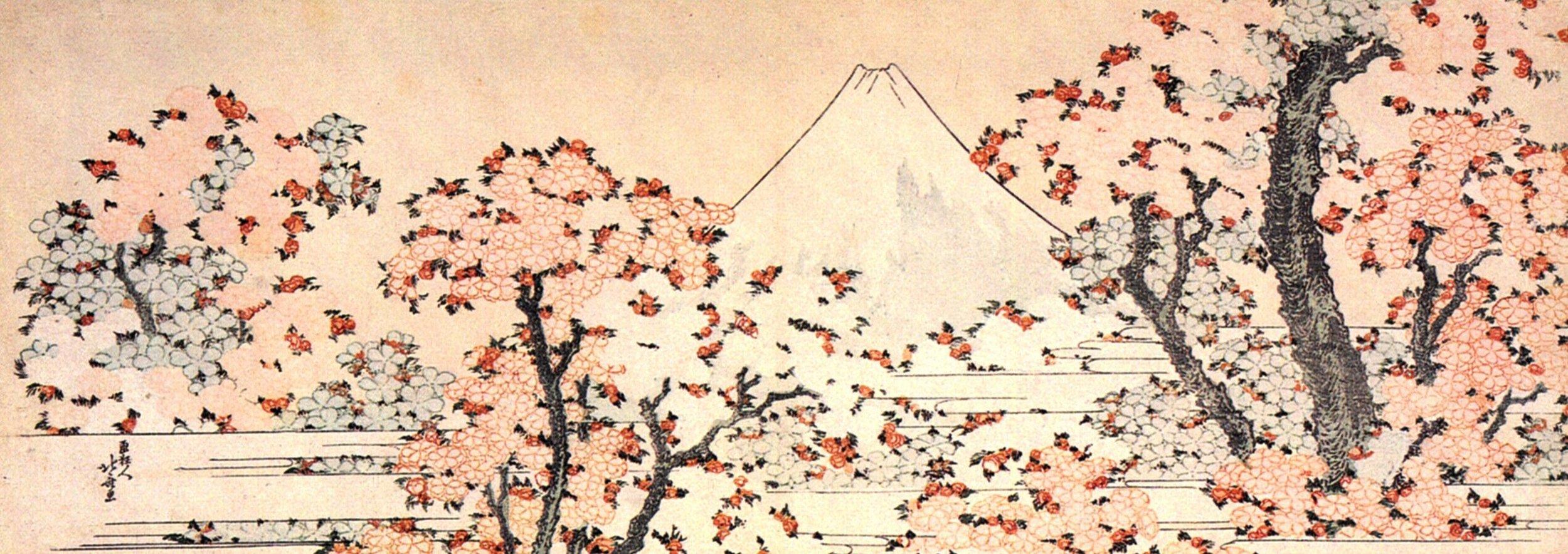 Mount Fuji seen across flowering cherries. Hokusai, c. 1802 -05. Bron: Rijksprentenkabinet, Rijksmuseum Amsterdam.