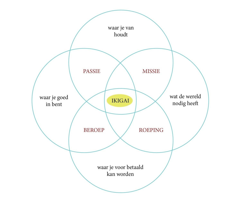 Ikigai en opruimen volgens de KonMari-methode zijn verbonden