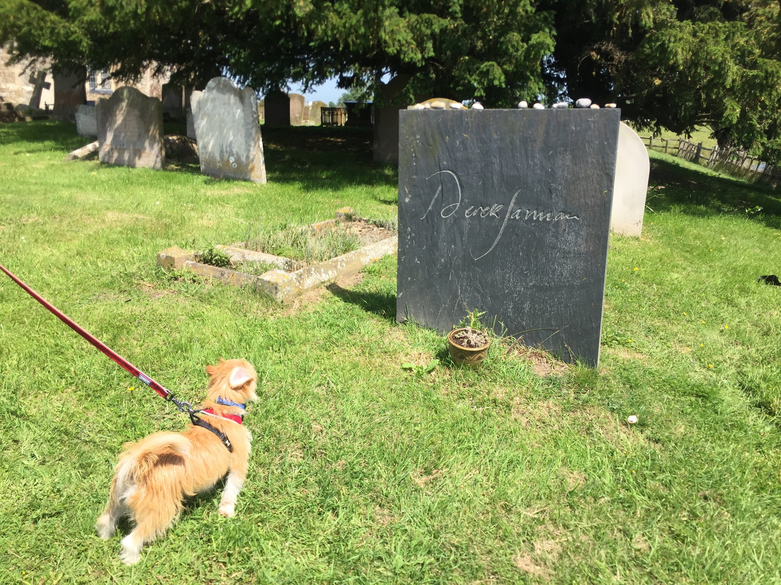 paying our respects in the churchyard