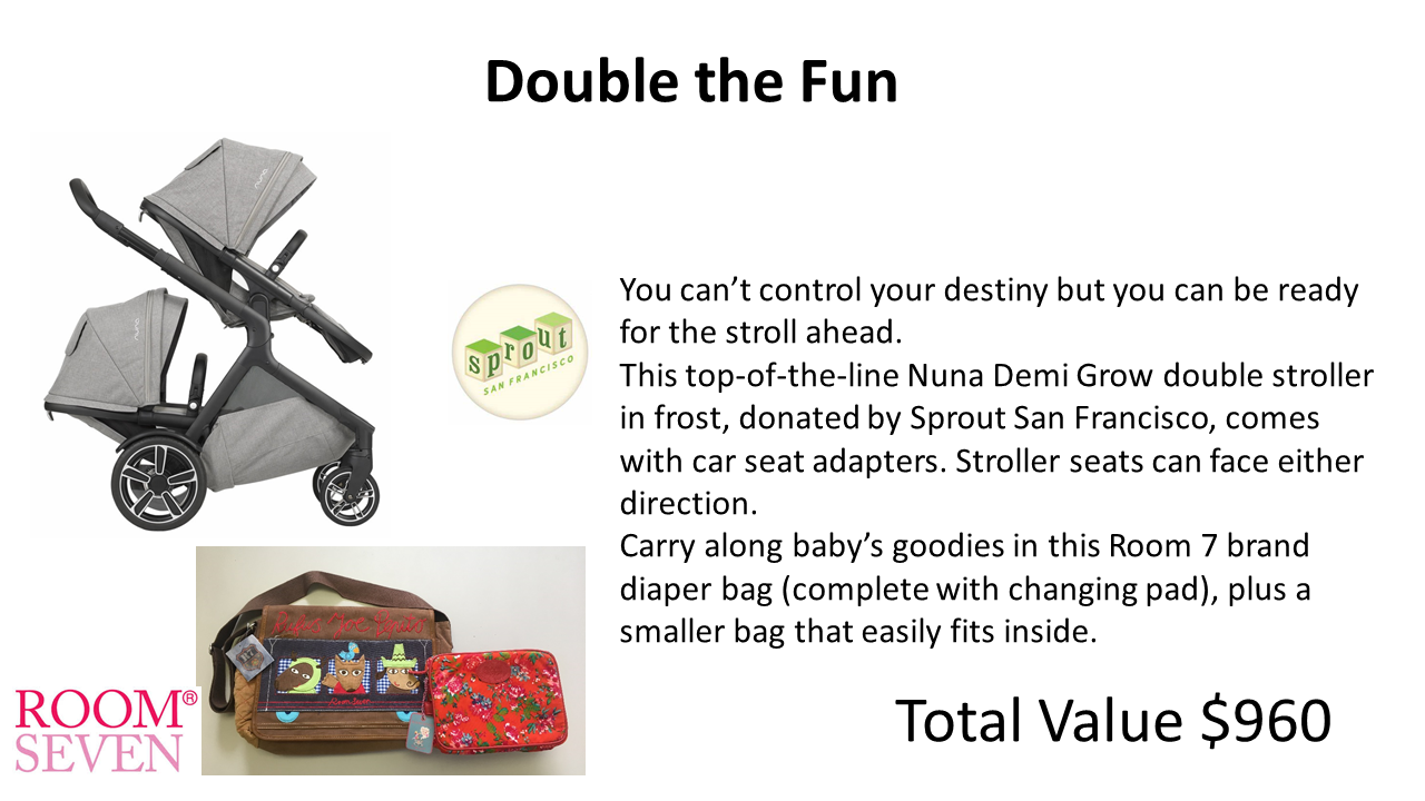 33 double stroller.png
