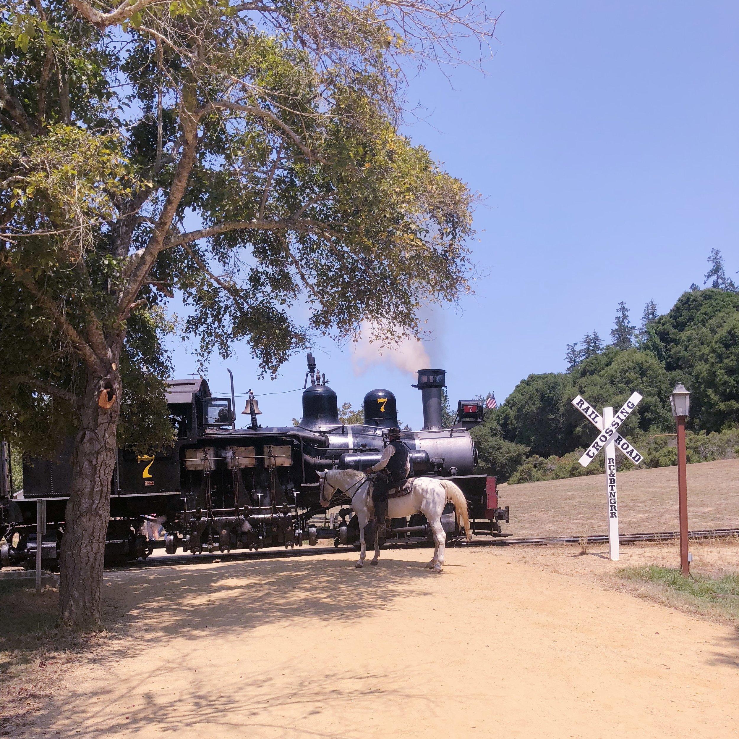Roaring Camp Railroads Felton Sheriff