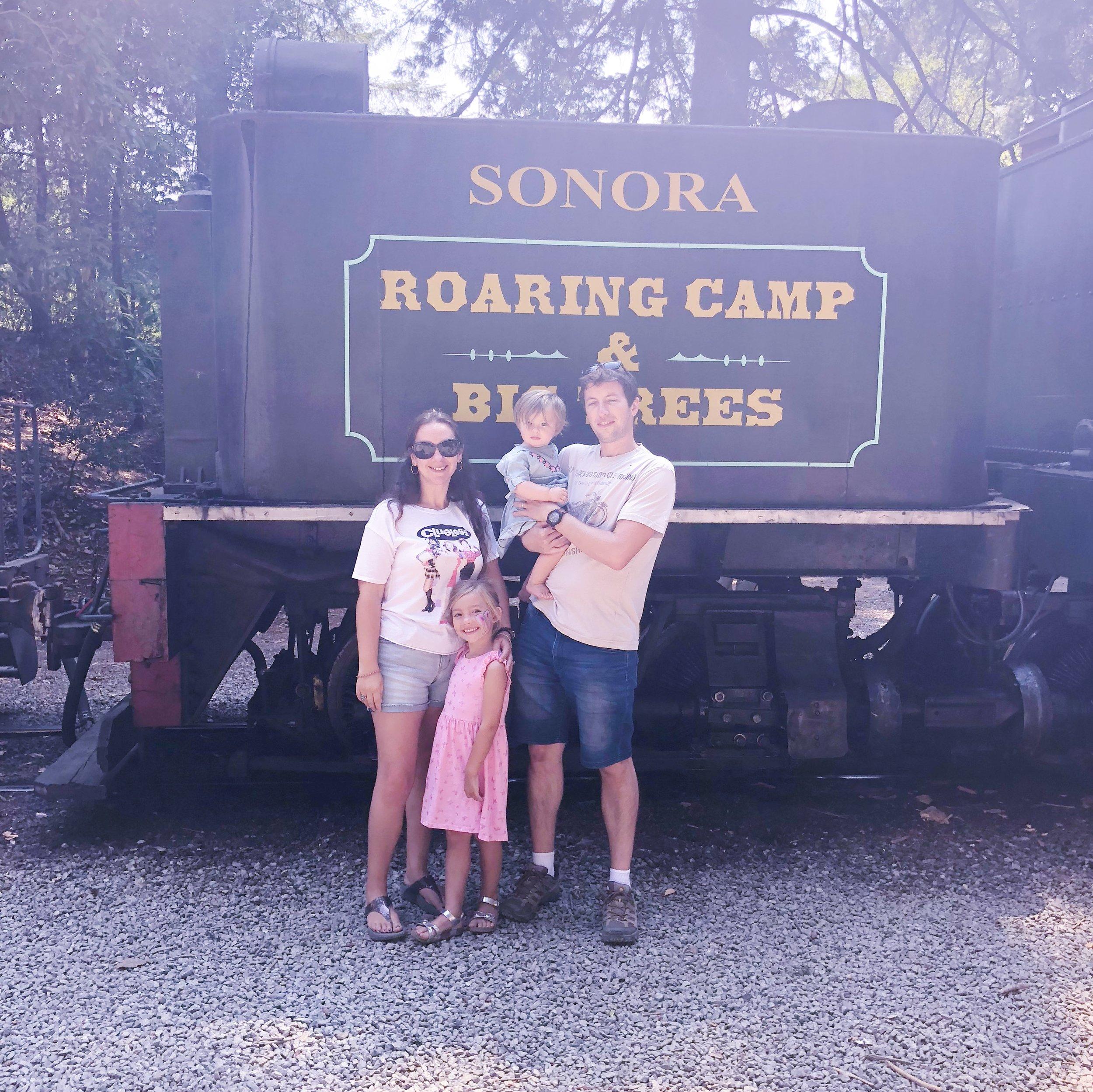 Roaring Camp Bear Mountain Felton