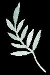 Logo Design Leaf