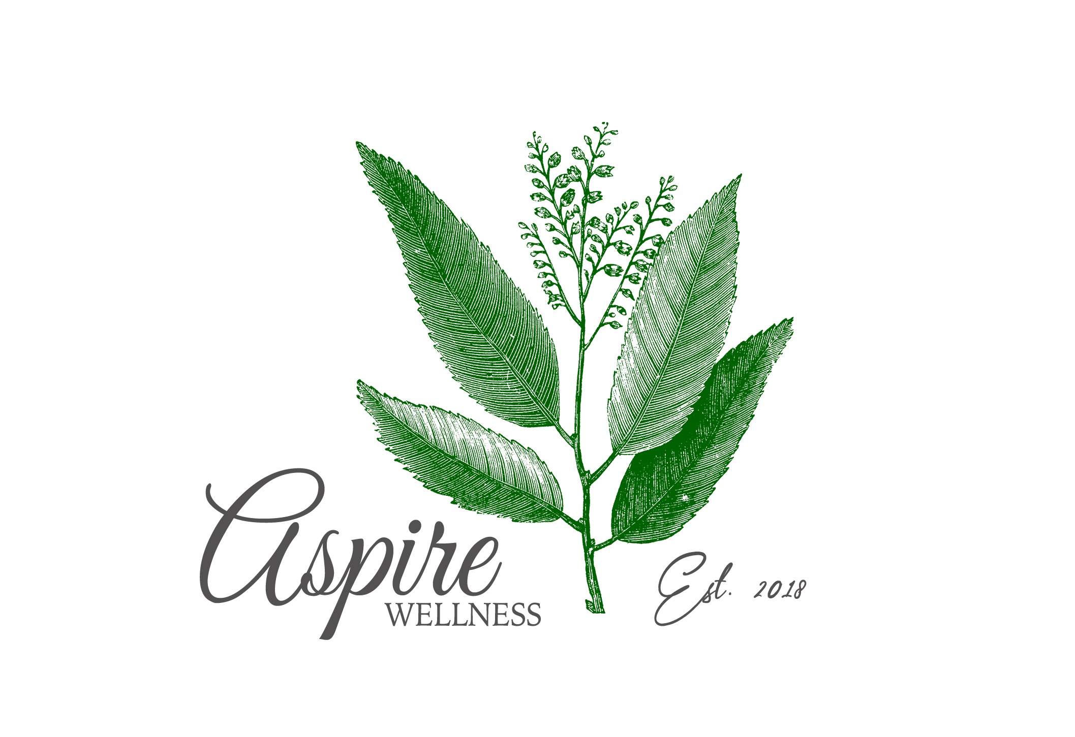 ASPIRE WELLNESS,  Shannon Beausoleil