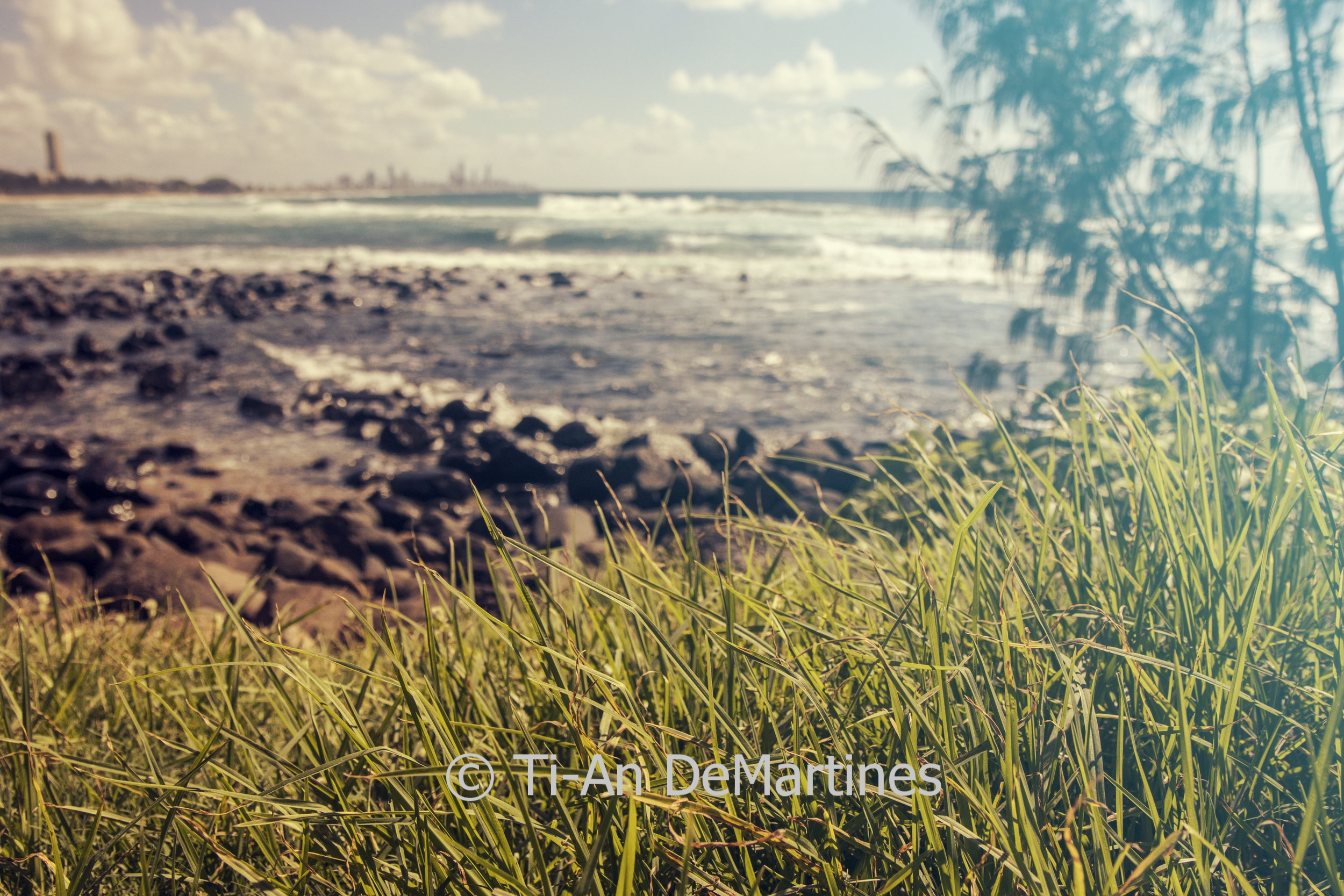 Laying in the Grass at Burleigh Hill   Digital photograph  2018