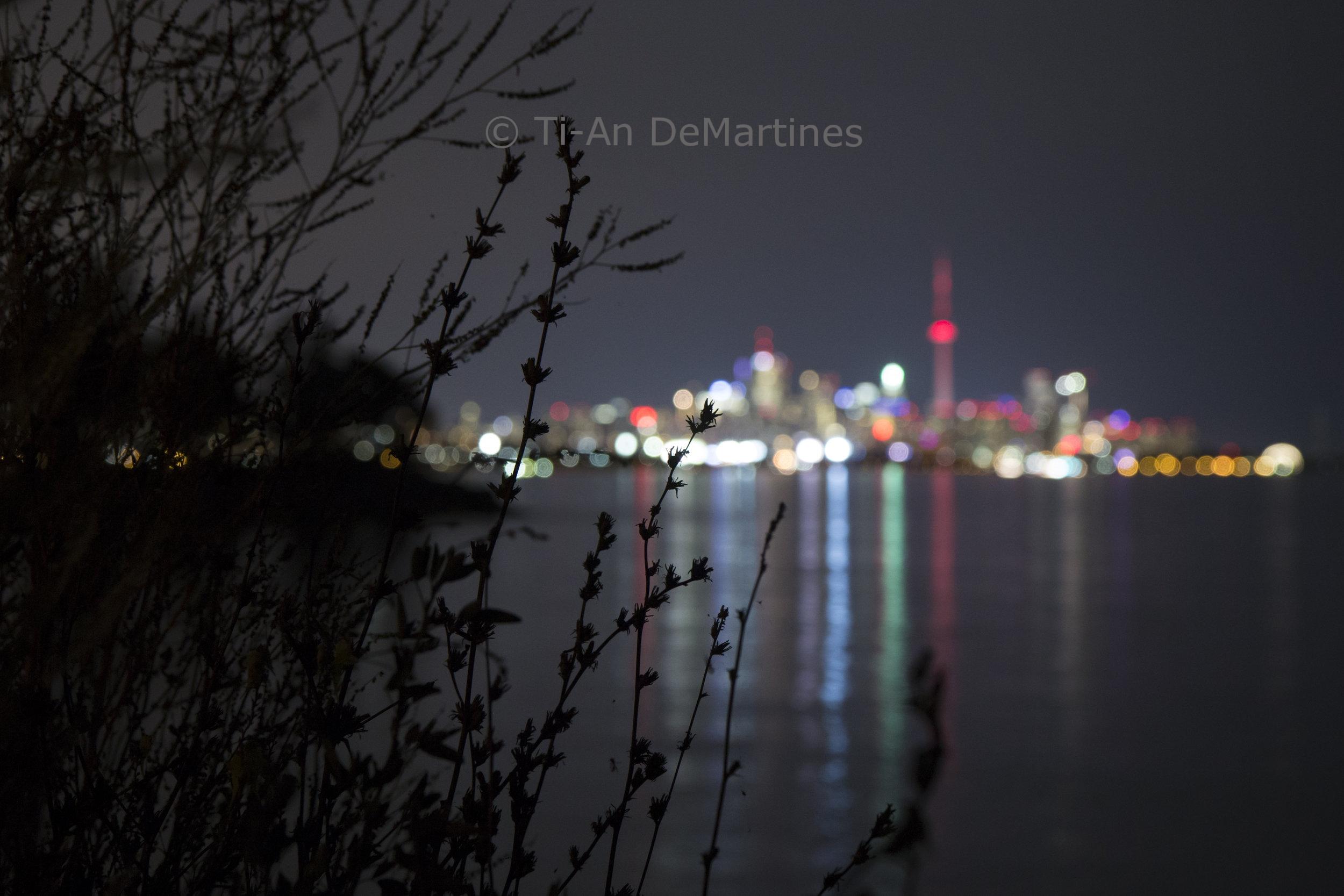 It's Bokeh, Toronto   Digital photograph  2017