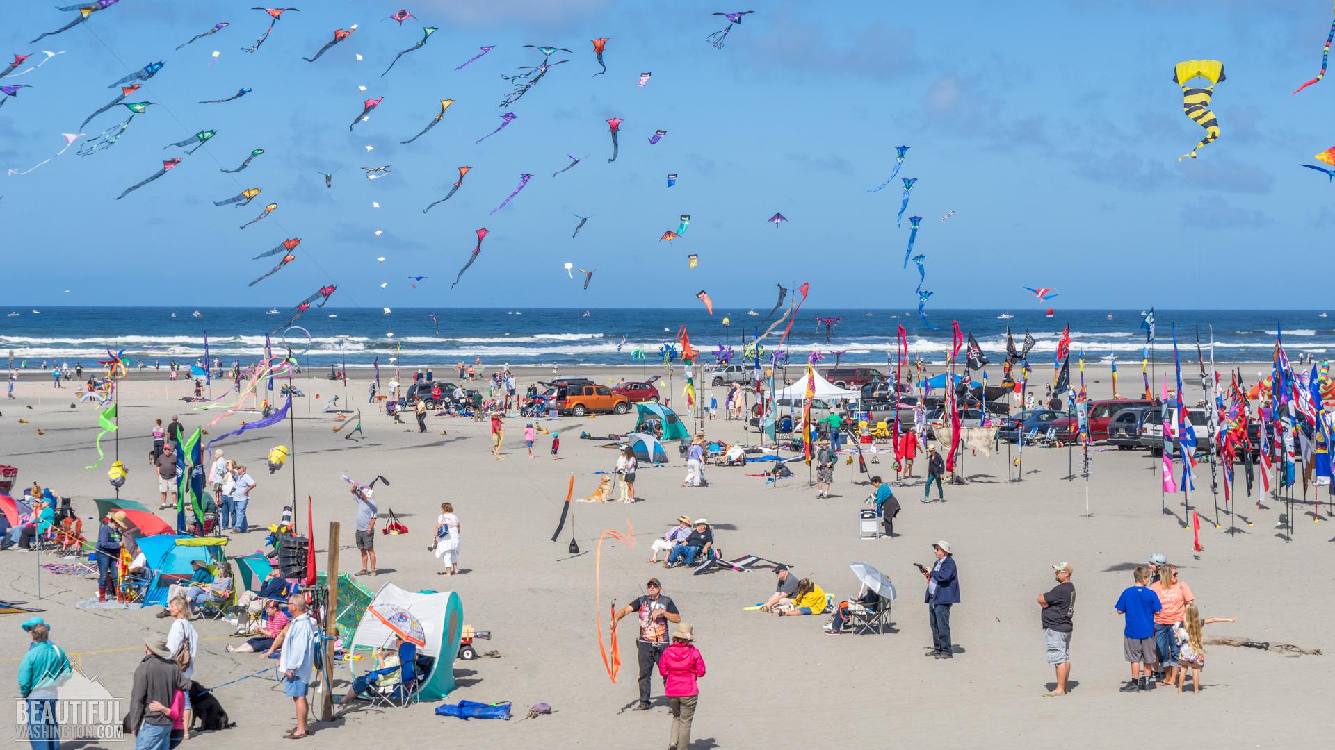 washington-state-international-kite-festival-46.jpg
