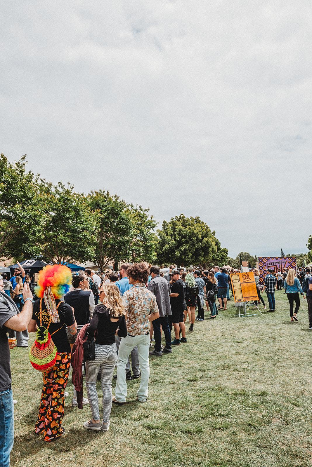 FestivalofFunk-39.jpg_websize.jpg