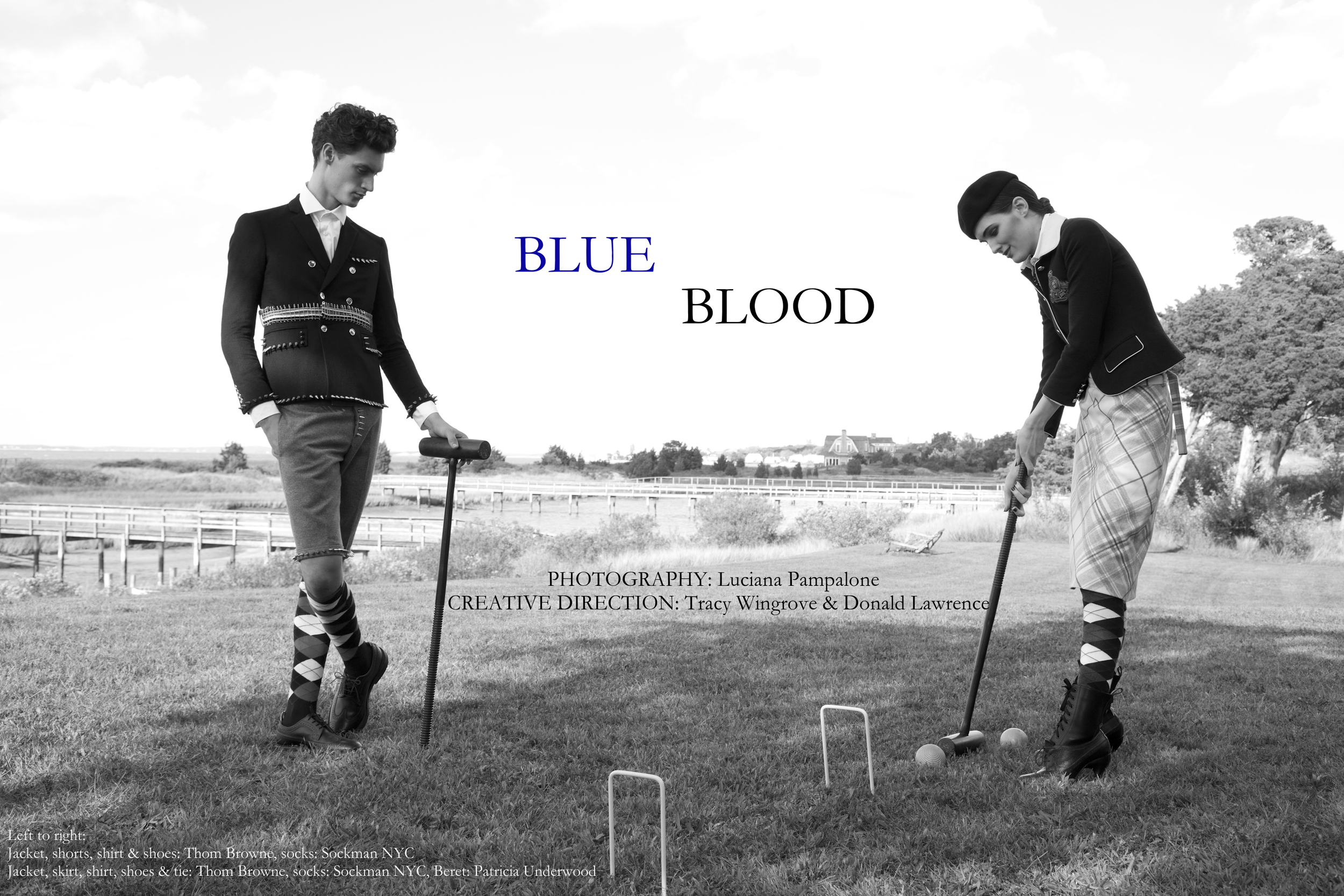 Blue+Blood+title.jpg