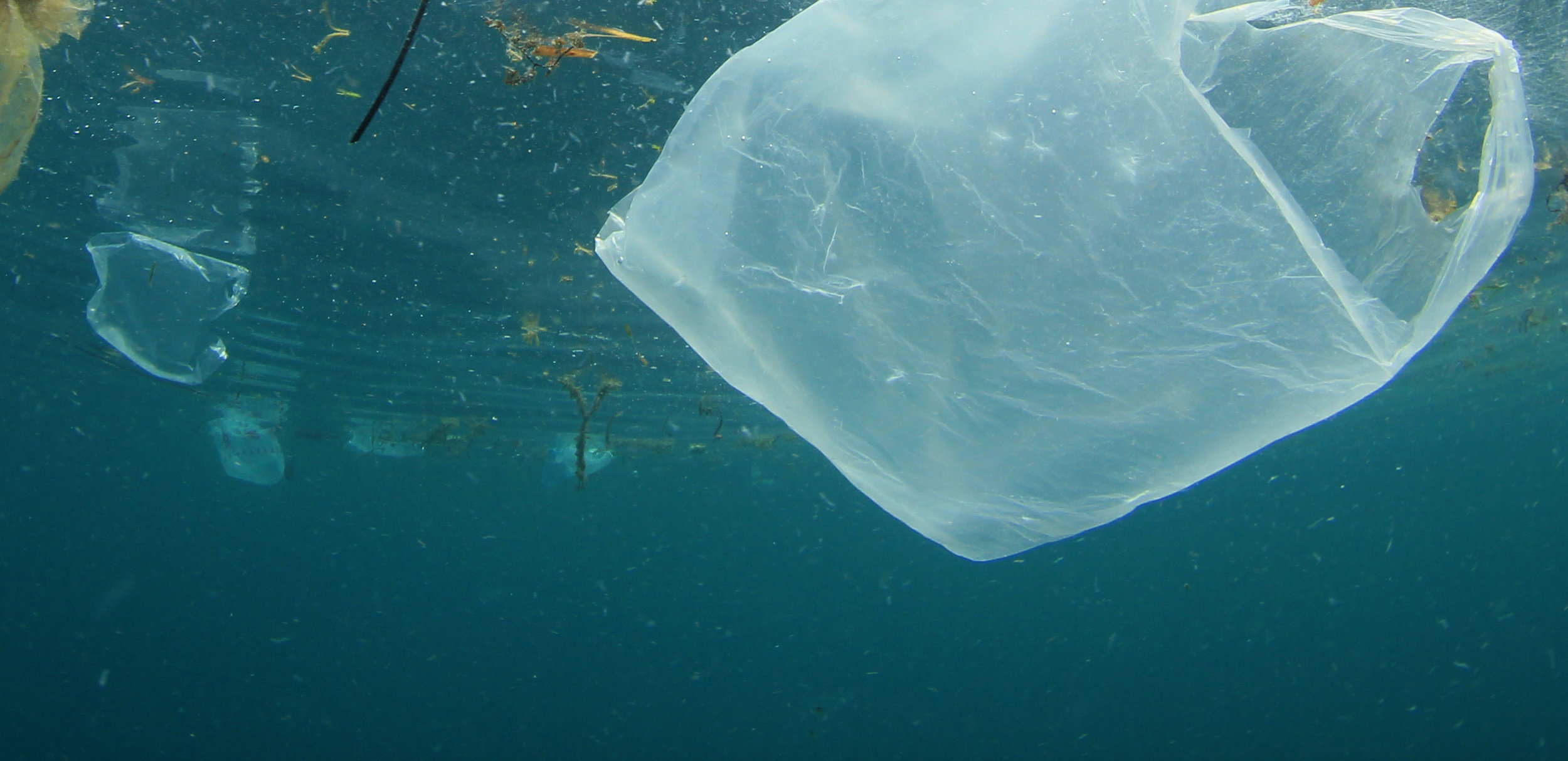plastic-in-ocean-will-disappear.jpg
