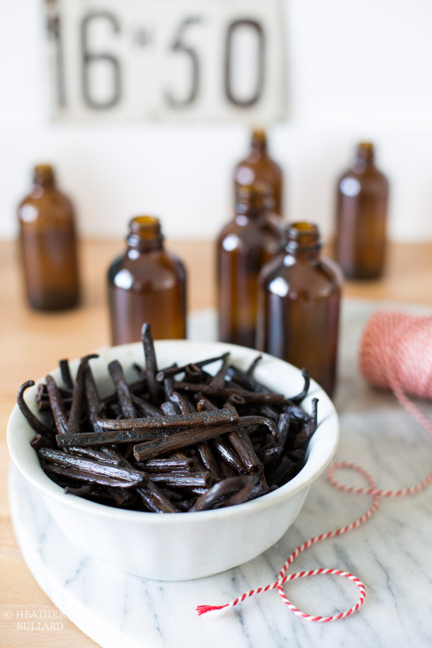 Heather Bullard | Vanilla Extract-104