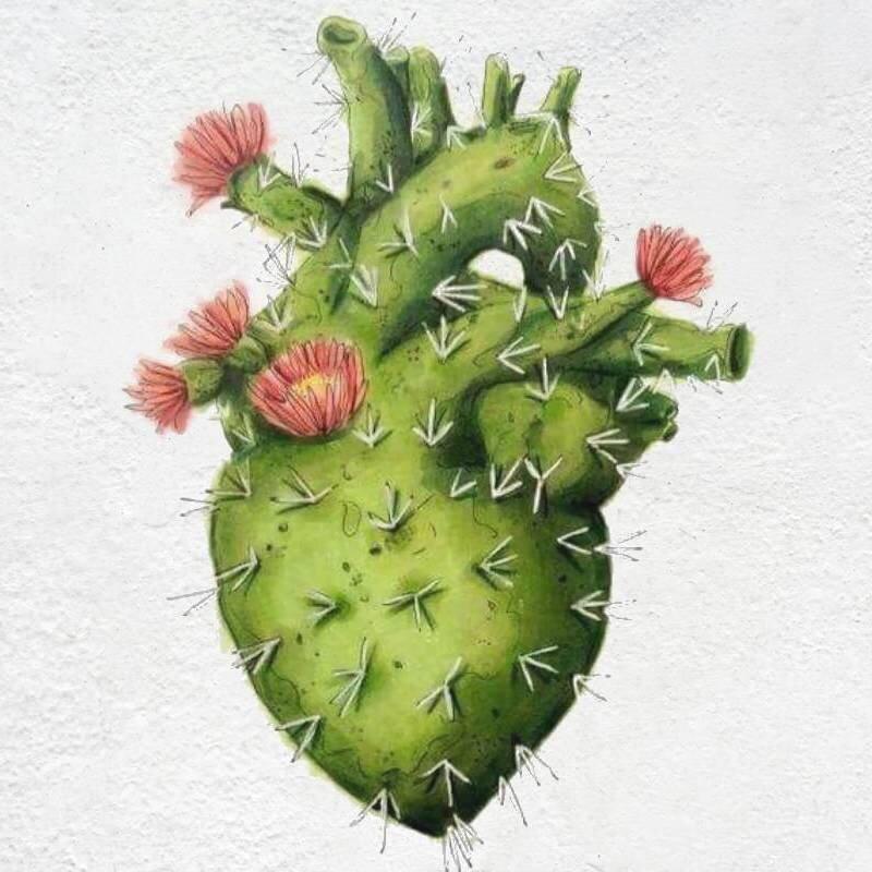 cactus-heart-plaster-800sq.jpg