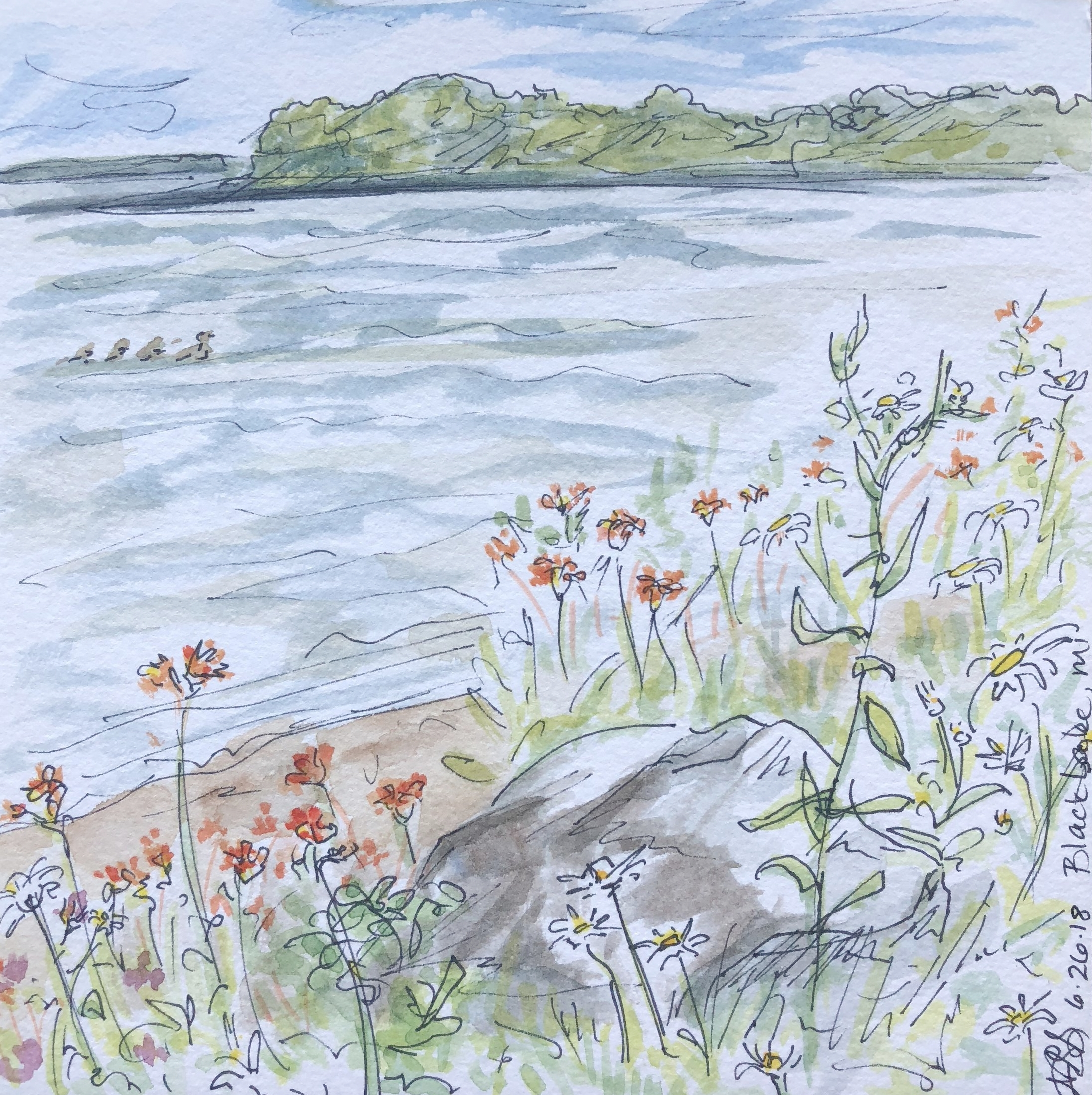 Black Lake watercolor with wildflowers