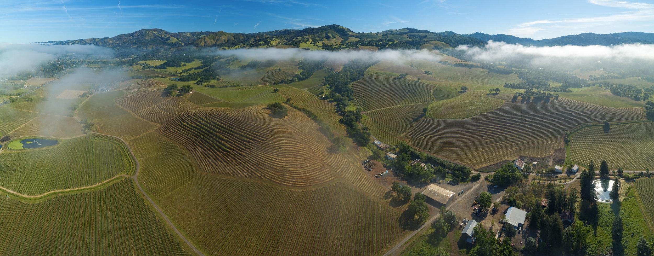 High-resolution aerial panoramas