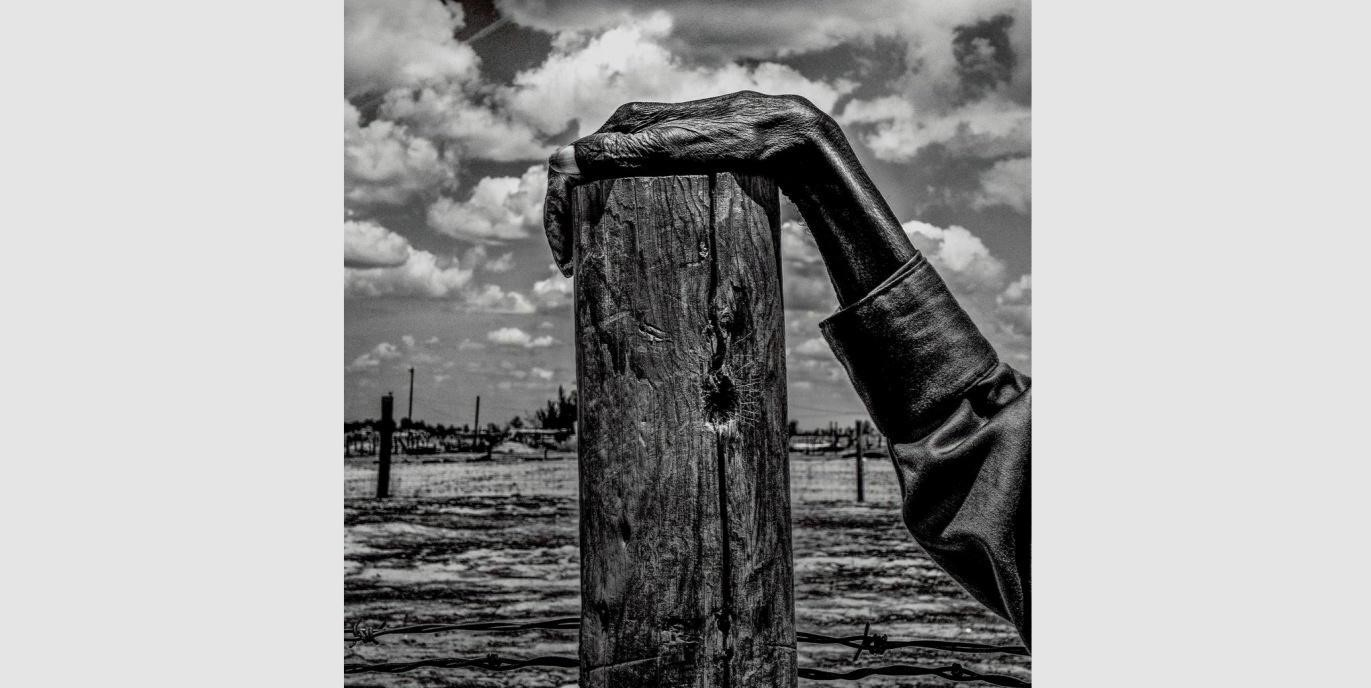 Matt Black      USA. Allensworth, California. Fence post. Allensworth has a population of 471 and 54% live      below the poverty level. , 2014    Magnum Photos