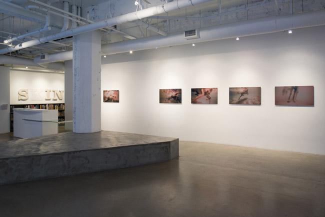 Ana Teresa Fernánde:, Foreign Bodies,  installation view, Gallery Wendi Norris, San Francisco, CA, April 3 – May 31, 2014, Photographer: JKA Photography