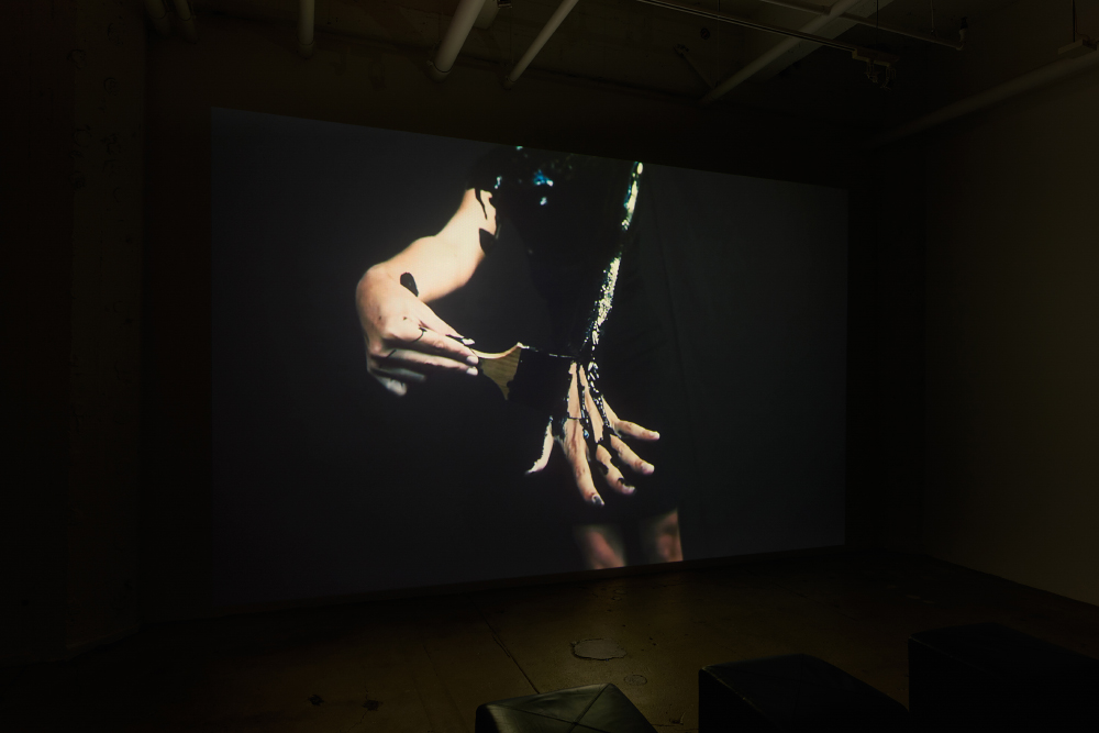Ana Teresa Fernández: Erasure,  installation view, Gallery Wendi Norris, March 10 - April 16, 2016, photographer: John Janca