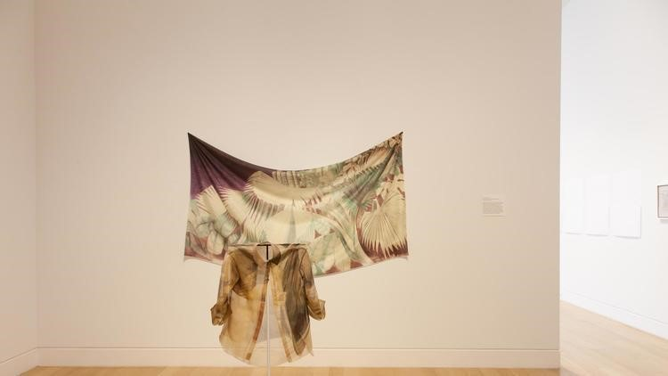"""An installation of """"Huong Ngo: To Name It is to See It"""" is on display at the DePaul Art  Museum. (Lizabeth Applewhite photo)"""