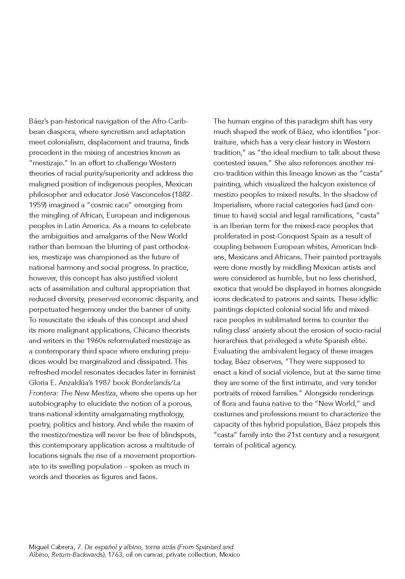 baez brochure_12 pg_web_Page_04.jpg