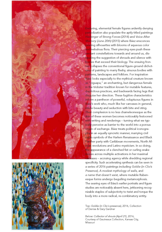 baez brochure_12 pg_web_Page_08.jpg