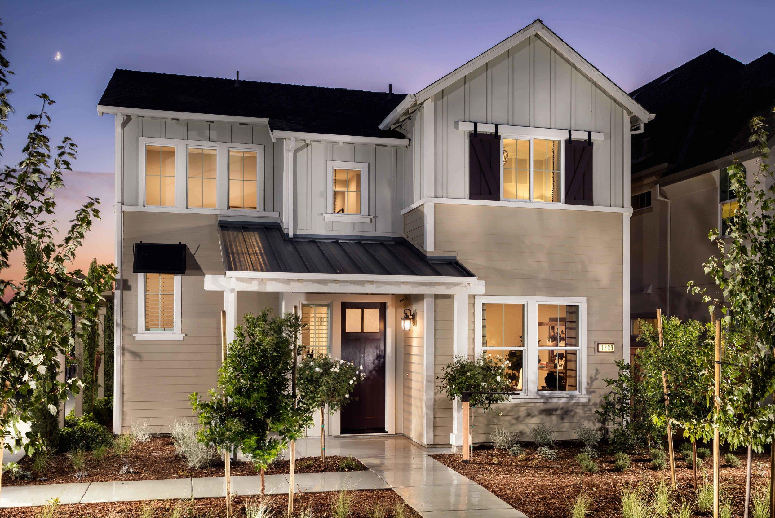 Persimmion   | Davis, California