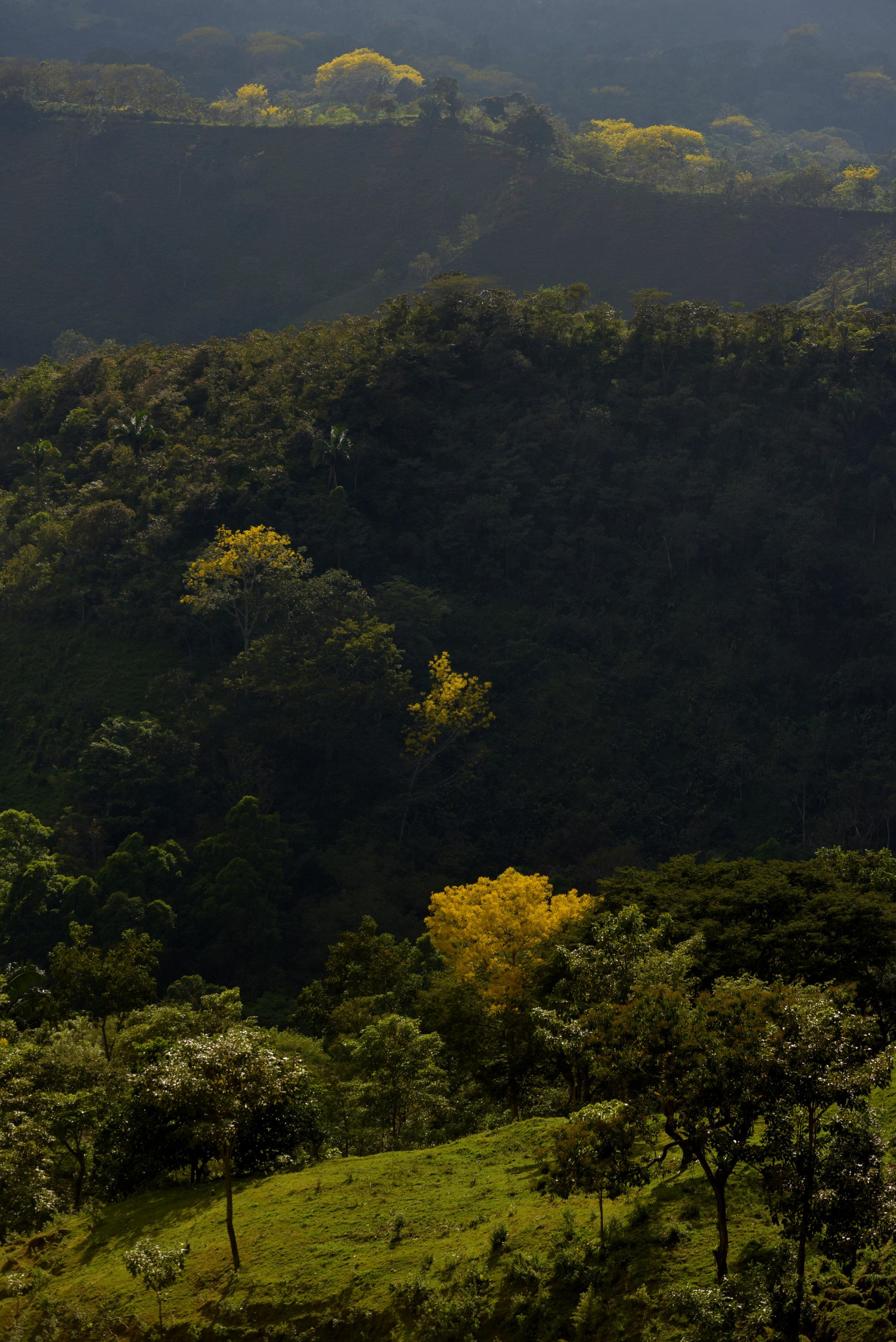 Los hermosos parajes de Mastatal y alrededores