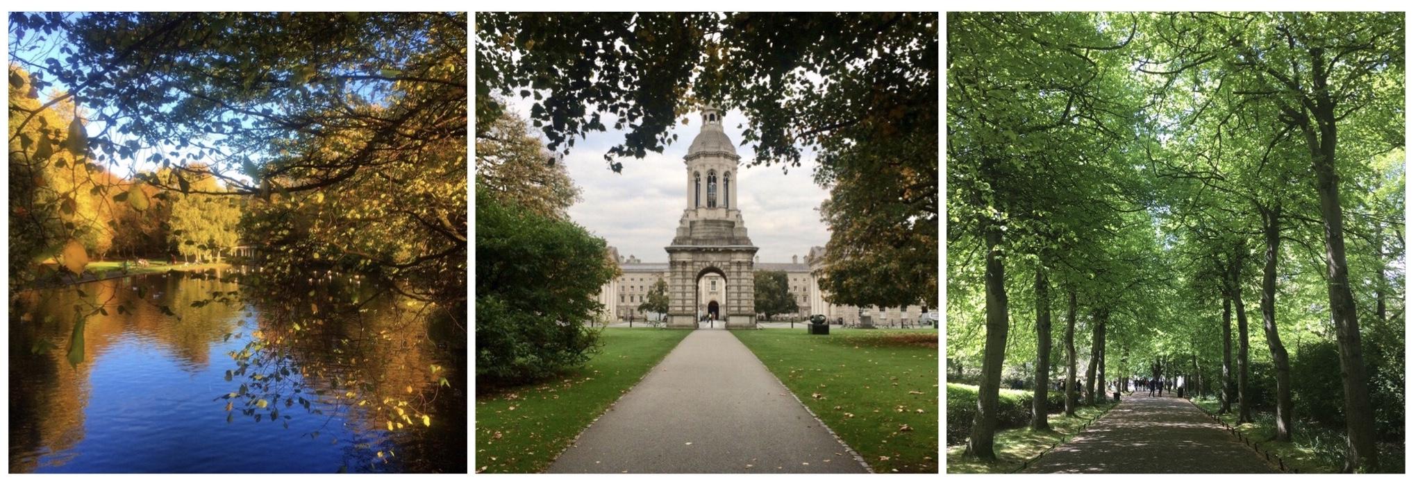 Dublin Play