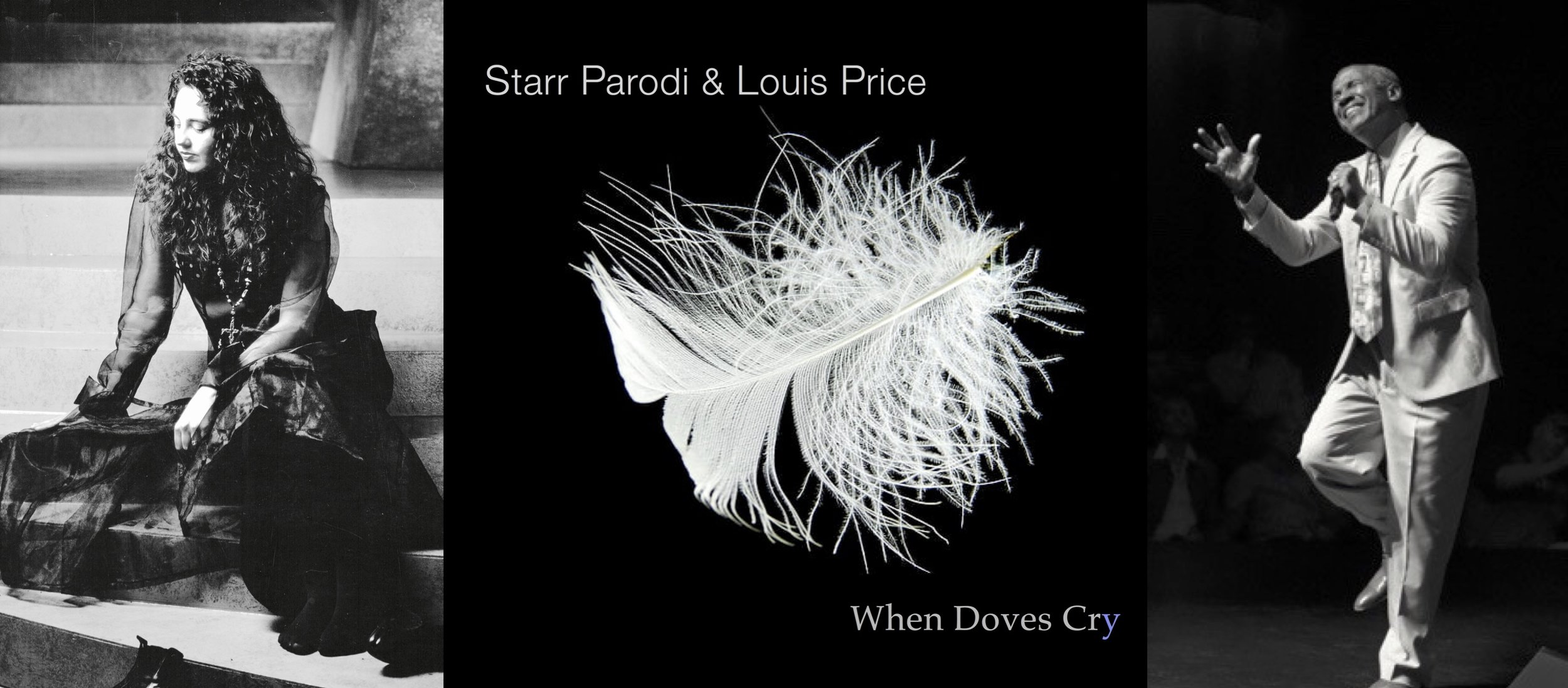 Starr & Louis When Doves Cry One Sheet Pic1.jpg