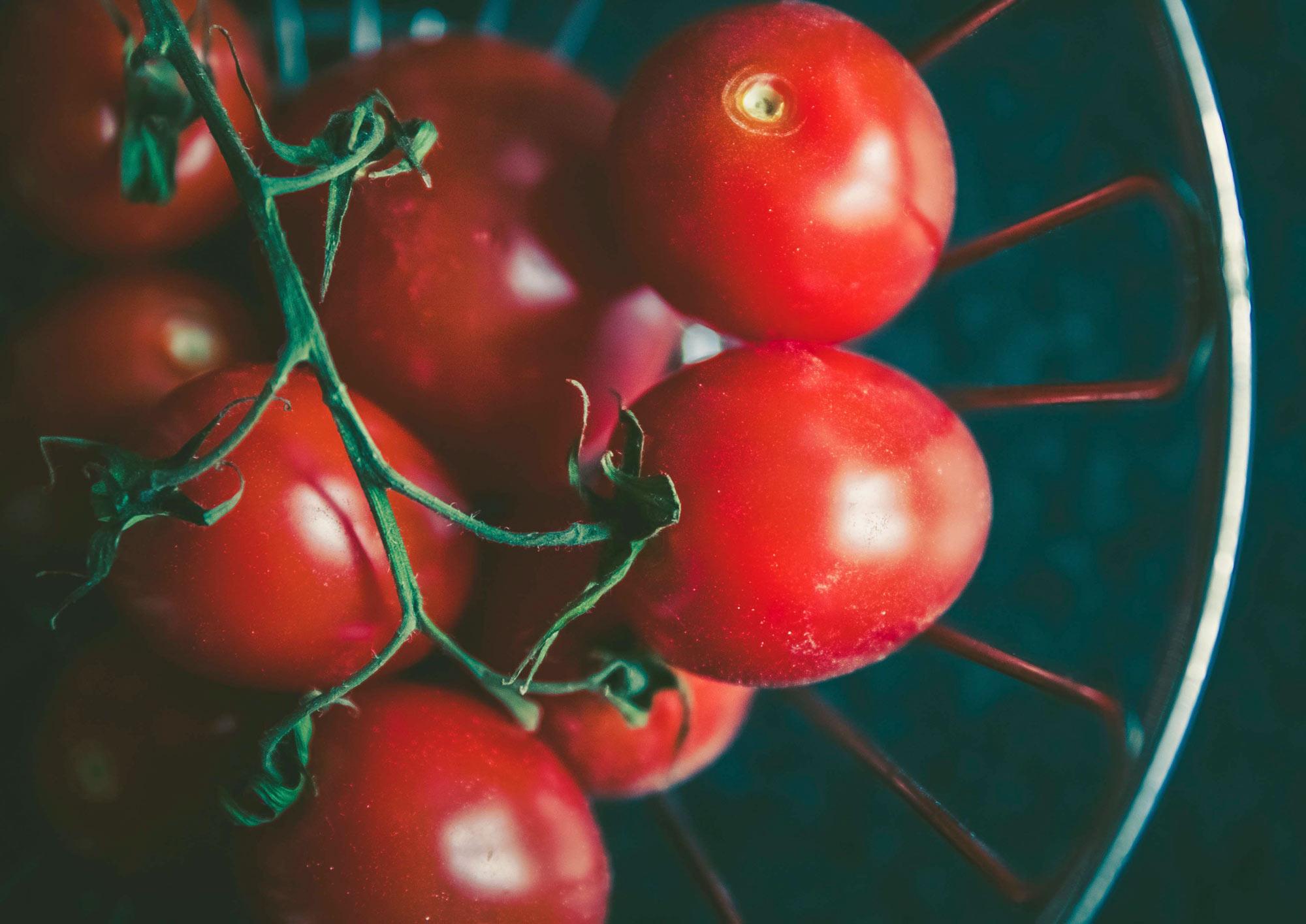 gusto-healthy-ingredients.jpg
