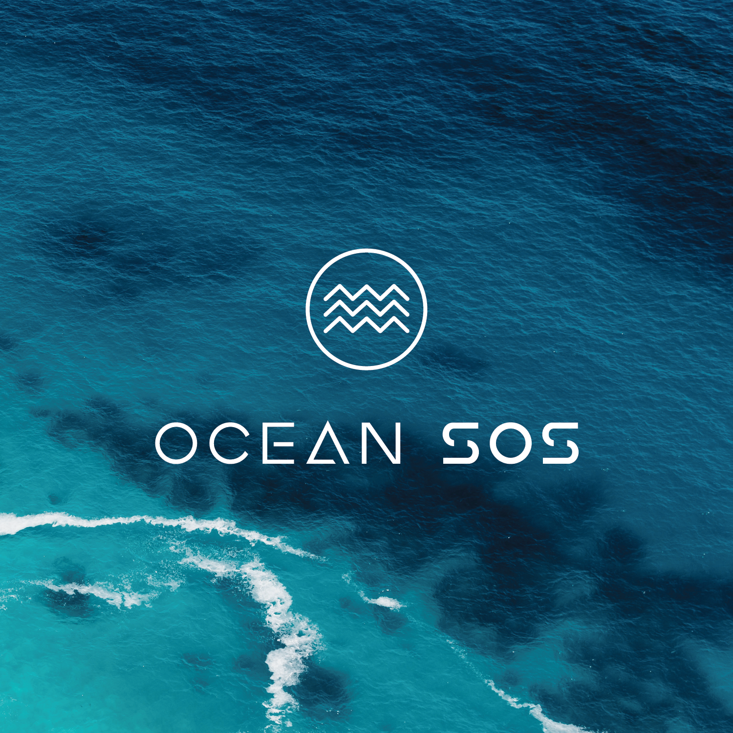 Ocean SOS - I am the co-founder and Director of Content of an Ocean Summit Series known as OceanSOS. Our inaugural events transpired in Manado City - Indonesia, San Francisco, and Miami. Our framework worked to integrate both local and international officials, funders, innovators, academics, and other stakeholders to create a global network among regenerative ocean initiatives with a focus on bridging next-gen approaches in technology, decentralization, community governance, blended funding, and cultural integration. We partnered with Schmidt Marina Technology Partners on content curation as well as with the Sustainable Oceans Alliance (SOA) to create an SOA Indonesia Chapter led by local youth ocean initiatives.