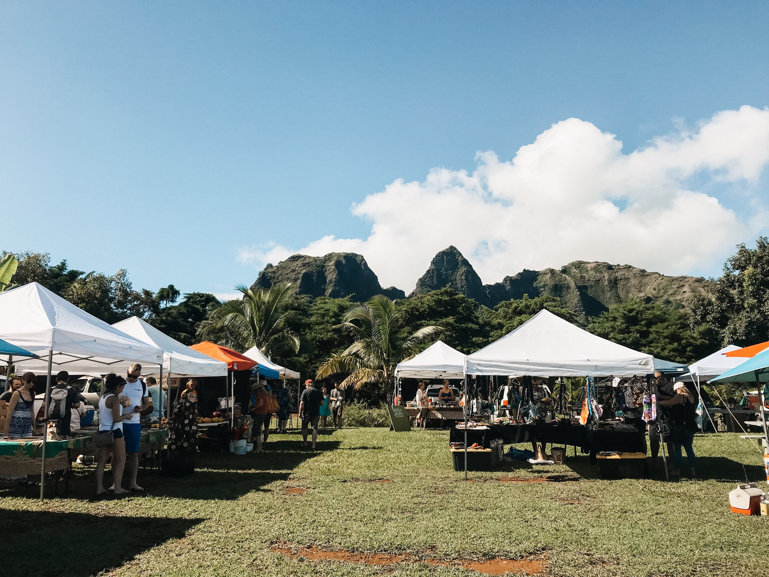 Sunday morning was spent supporting the locals, wandering around the Kalalea ANAHOLA Farmer's Market. The views at the market did not disappoint.