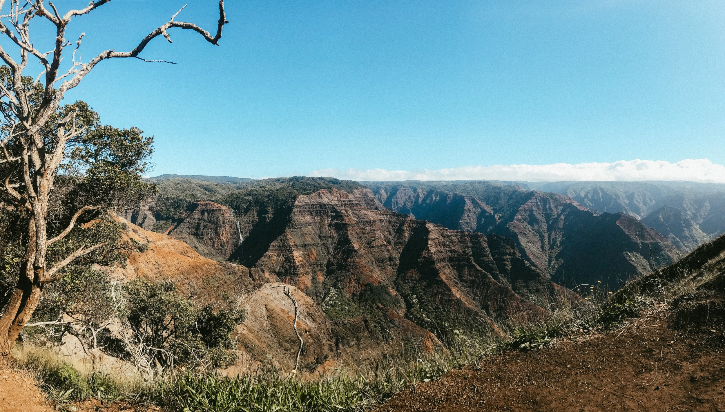 The next morning, we leisurely wound our way up through Waimea to take in the views of the canyon.