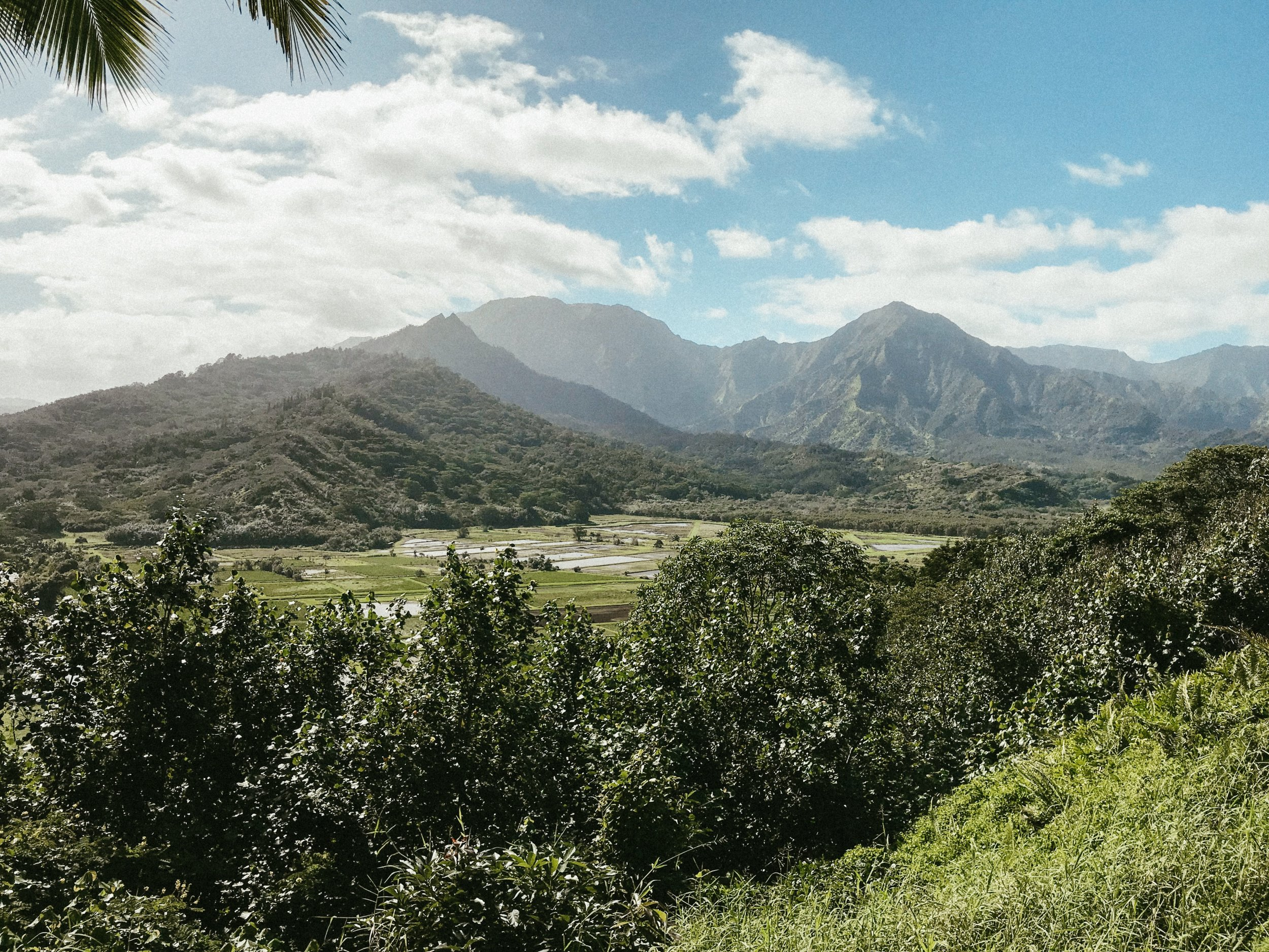 Midweek, we headed north to Hanalei. A pitstop at the Hanalei Valley Overlook was a great reason to stretch our legs and take some beautiful photos.