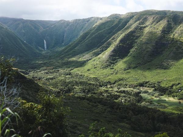 IMAGE COURTESY OF HAWAII TOURISM AUTHORITY