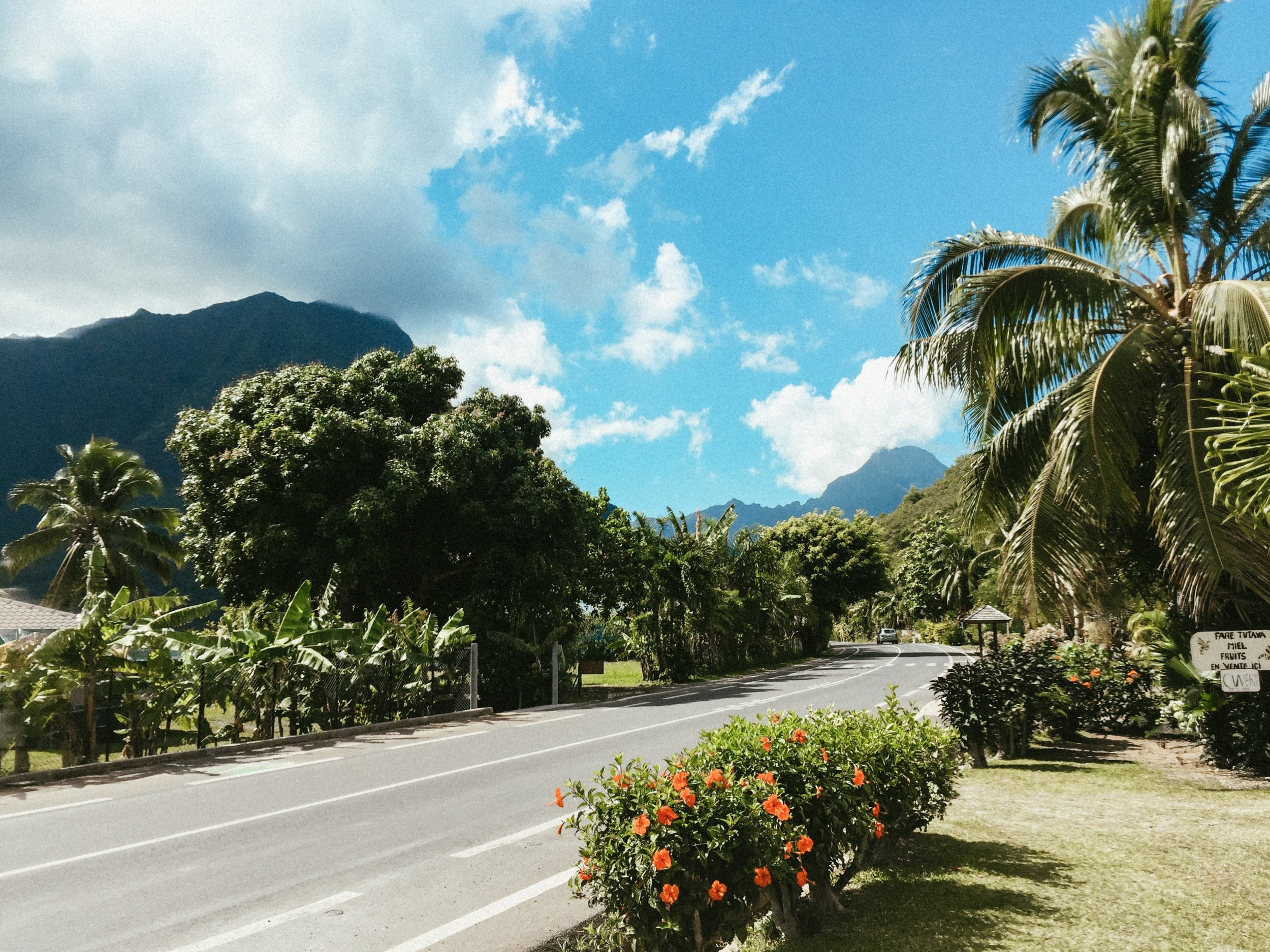 Flower-lined roads led us to the Hilton Mo'orea Lagoon Resort and Spa.