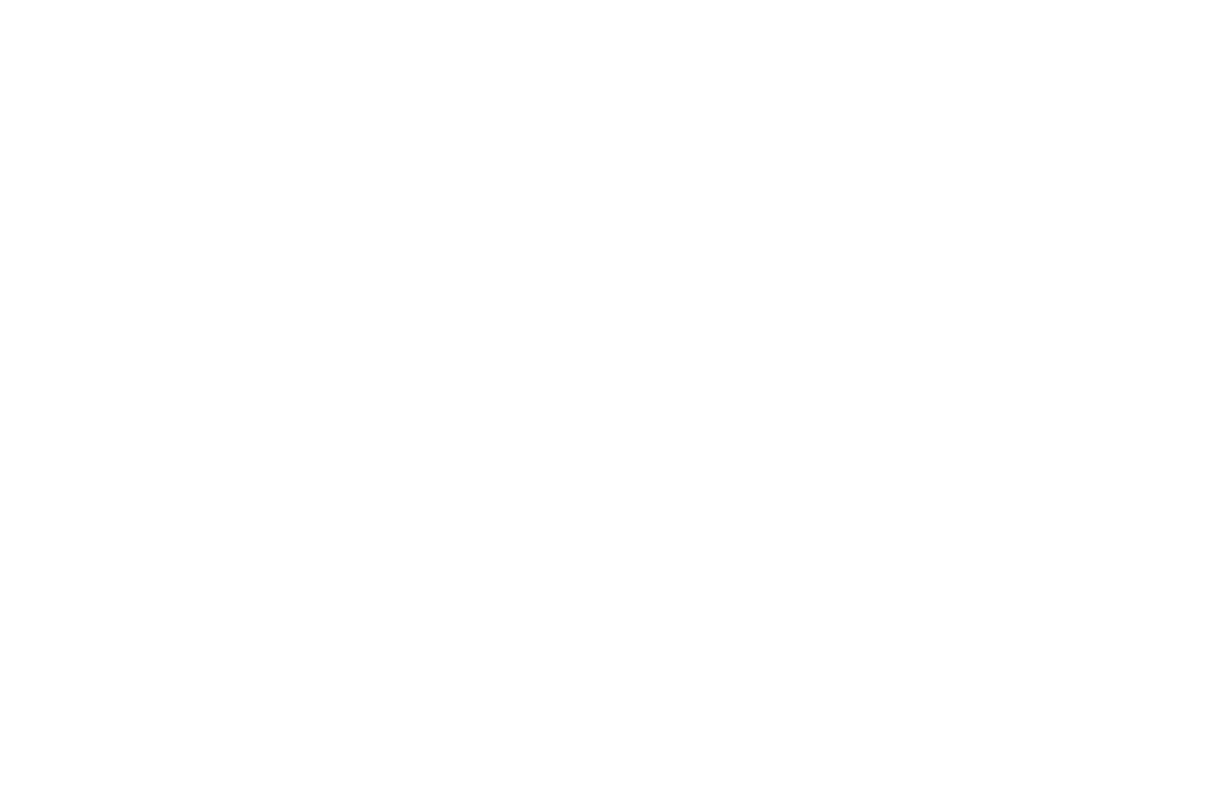 OFFICIAL SELECTION - Voices in Black and White - 2019.png