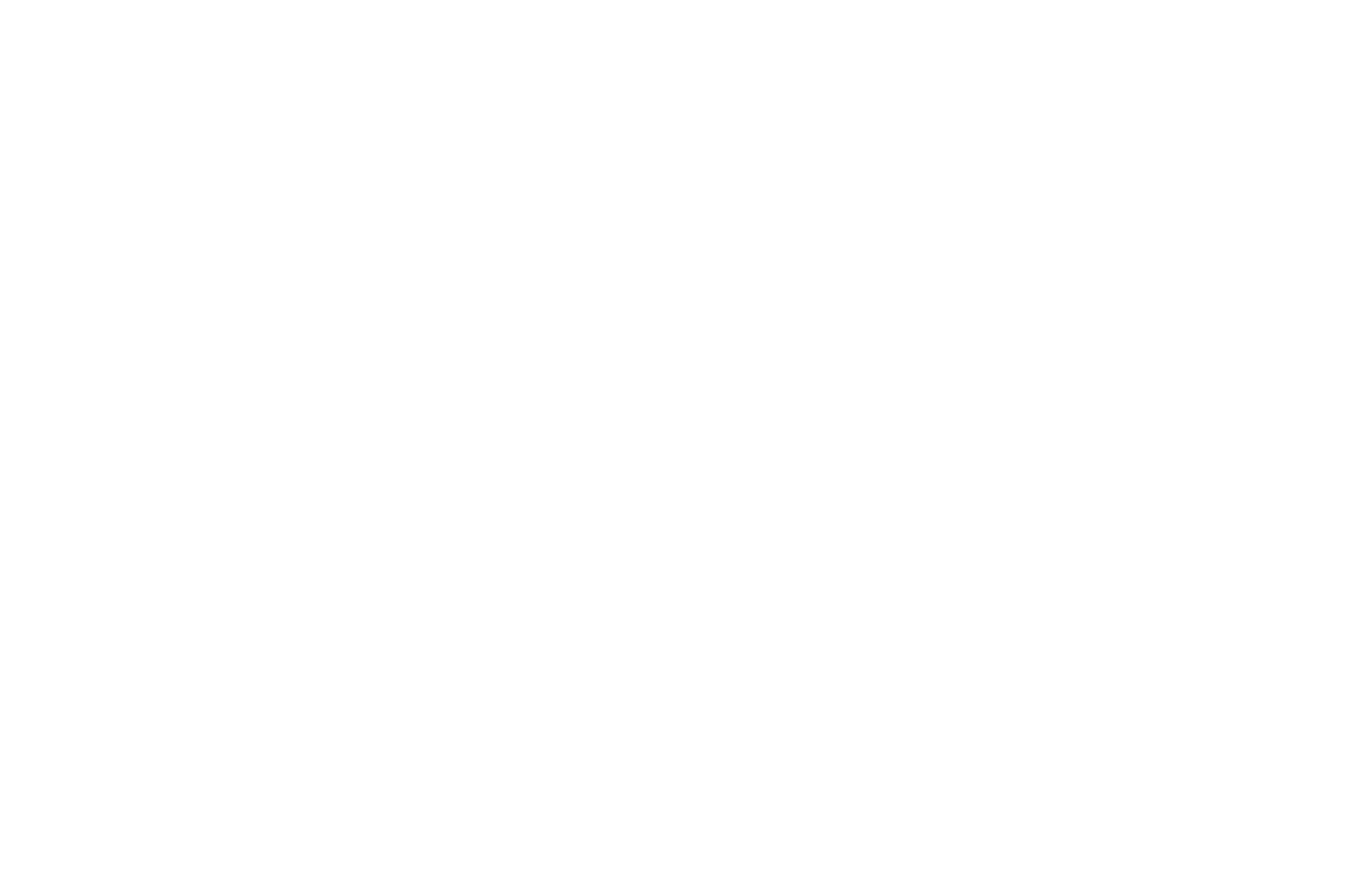 OFFICIAL SELECTION - Indie Gathering International Film Festival - 2019 2.png