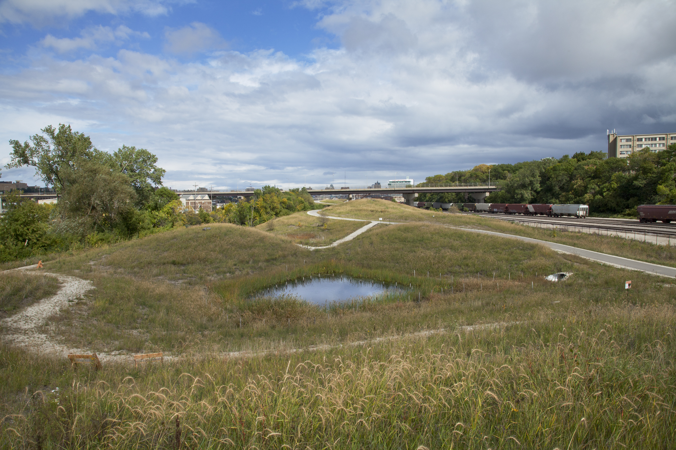 Natural Stormwater Filtration : Swales (Photo: Eddee Daniel)