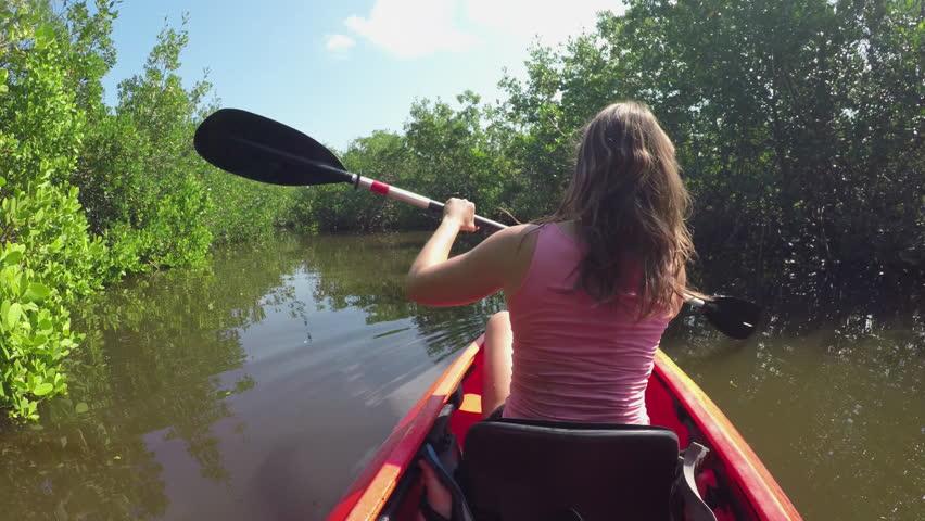 mission mangrove.jpg