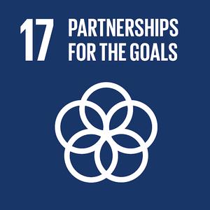 partnerships for goals.png