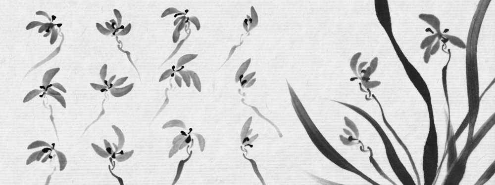 JAPANESE ORCHIDS STUDY. INK ON PAPER.