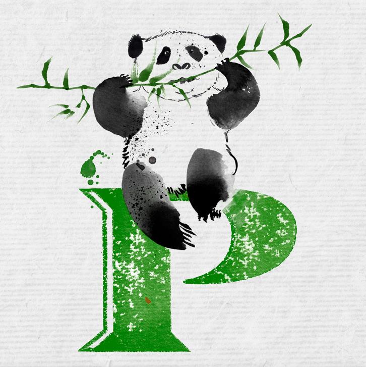P_PANDA-V5paper.jpg