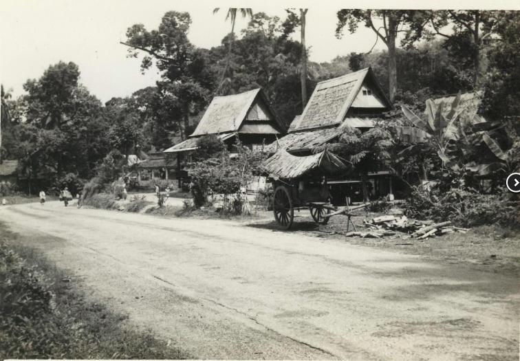 Arcadia Road ca. 1950