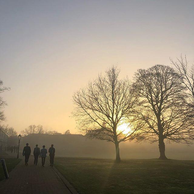 Beautiful December morning.