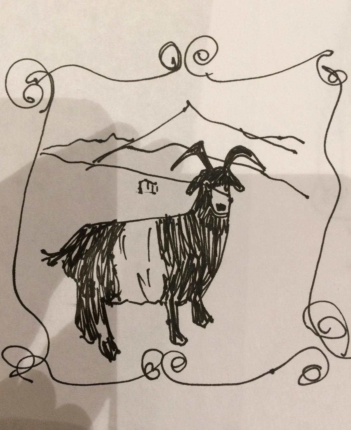 Hope's original goat sketch