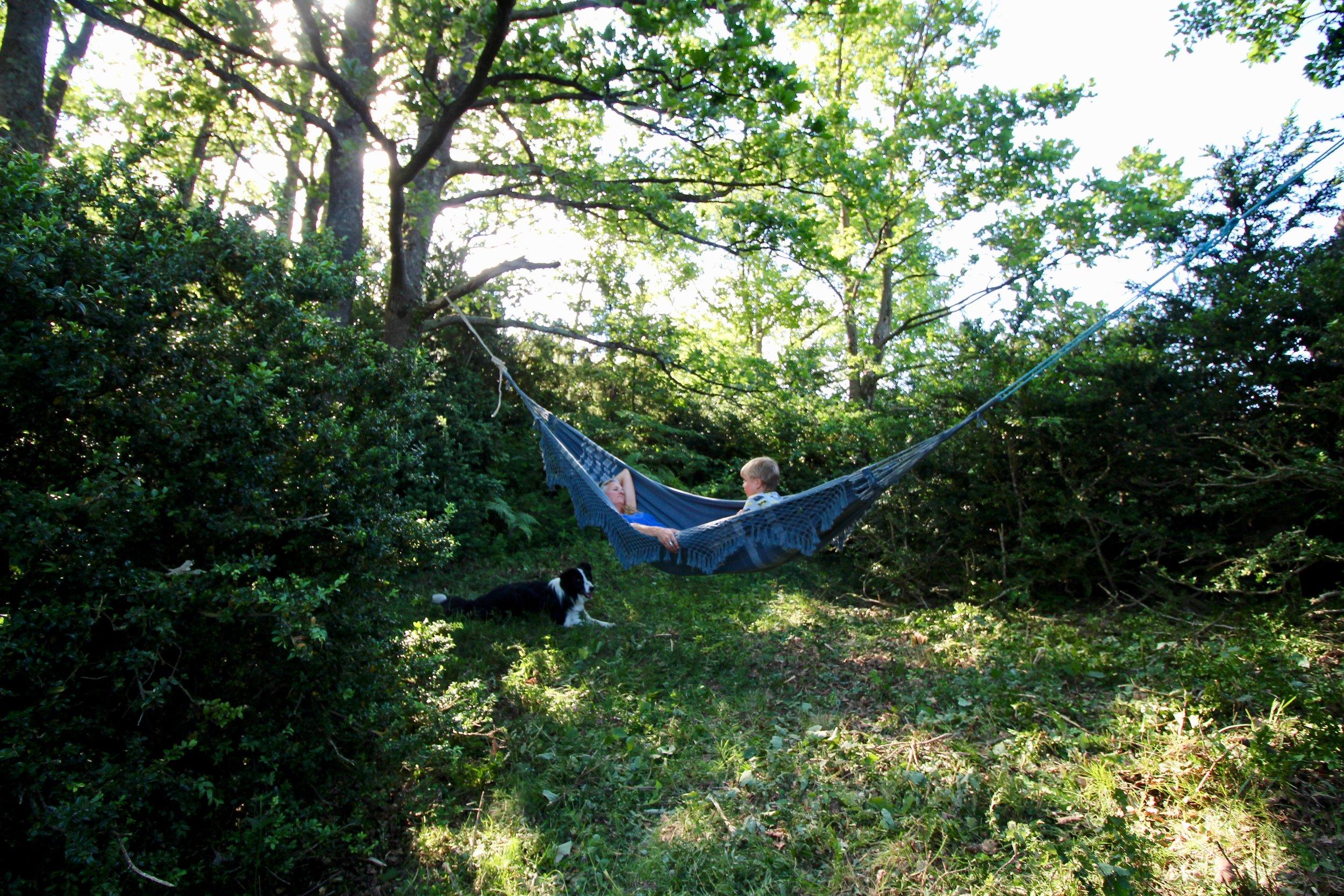 Secluded hammock spot