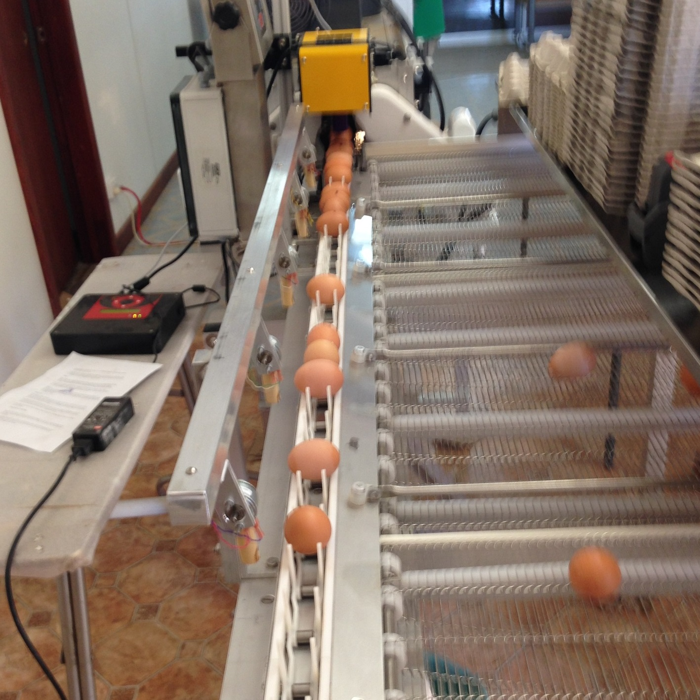 Grading machine weighing and sorting eggs